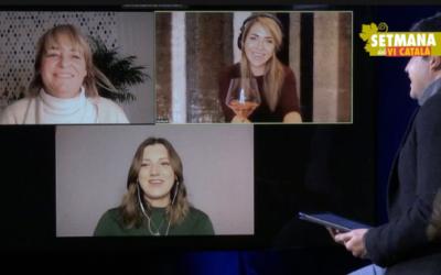 Ser digital o no ser: aquesta és la qüestió a les xarxes socials del vi després de la pandèmia