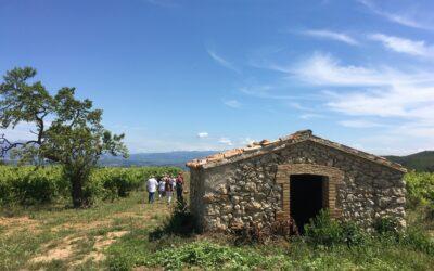 Turisme del vi: cultura, paisatge i exercici